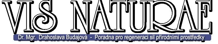 logo_vb_po_jmeno